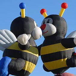 5 Day Balloon Fiesta (05UABG-101019)