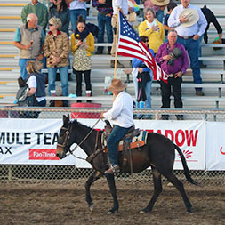 6 Day Mule Days Rally