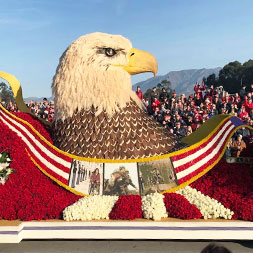 6 DAY ROSE PARADE
