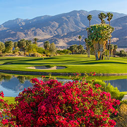 6 DAY PALM SPRINGS VALLEY BASH
