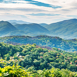 Enjoy the breathtaking scenery of the Smoky Mountains and Pigeon Forge.