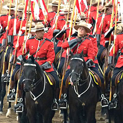 7 Day Calgary Stampede (07CCSW-070721)