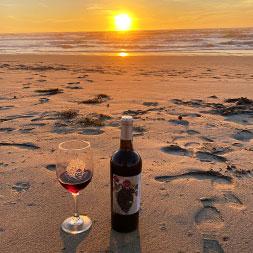 7 Day Baja Wine and Dine (07MBWF-110221)