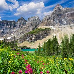 14 Day Alberta and Glacier National Park (14CAGG-071019)