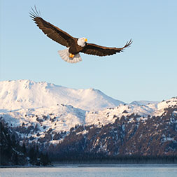 60 Day Premier Alaska