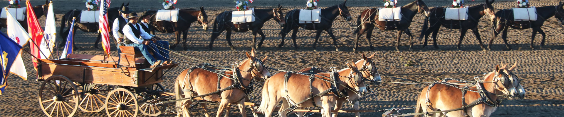 Fantasy RV Tours: 6 Day Mule Days Rally (06UMDF-052020)