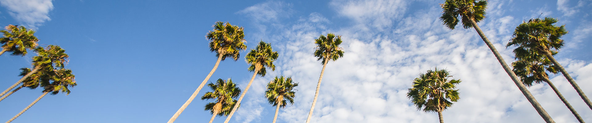 Fantasy RV Tours: 6 Day Palm Springs Valley Bash (06URRP-040120)